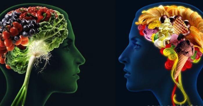 Cibi per il cervello e sistema nervoso