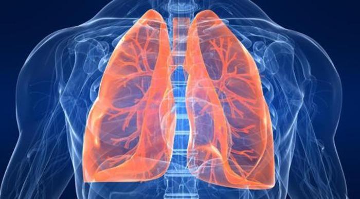 Salute dei polmoni