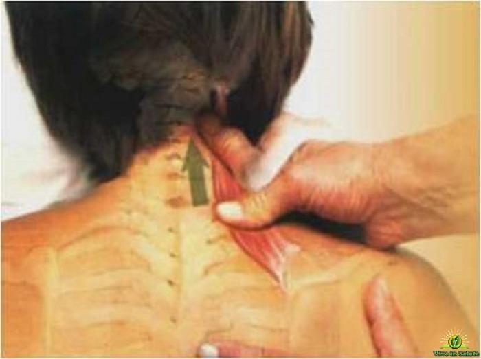 Eliminare il dolore alla schiena e al collo