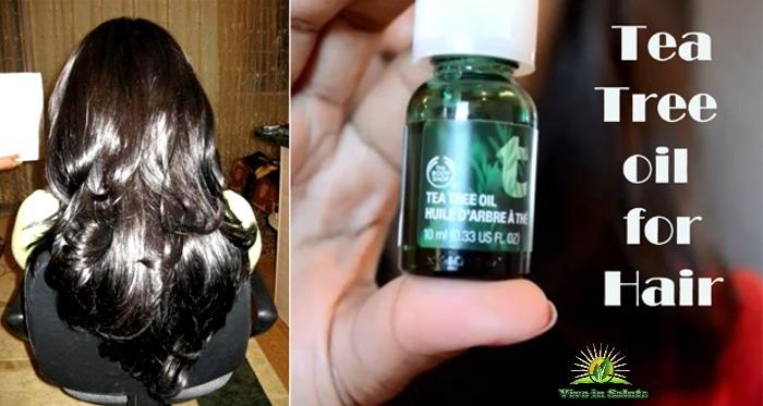 Olio Tea tree per capelli