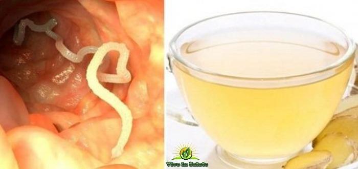 Eliminare i parassiti dal vostro corpo