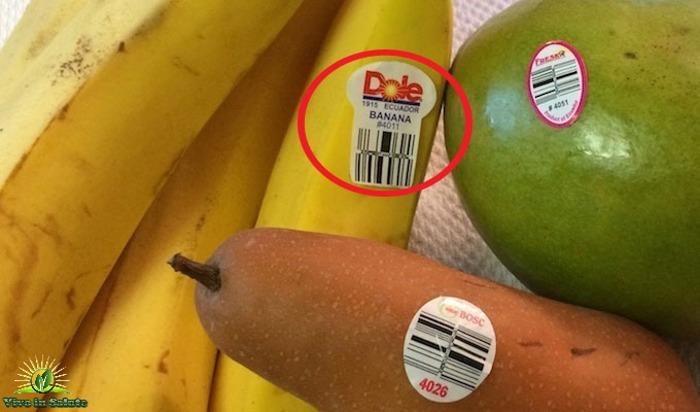Riconoscere un prodotto biologico convenzionale o geneticamente modificato