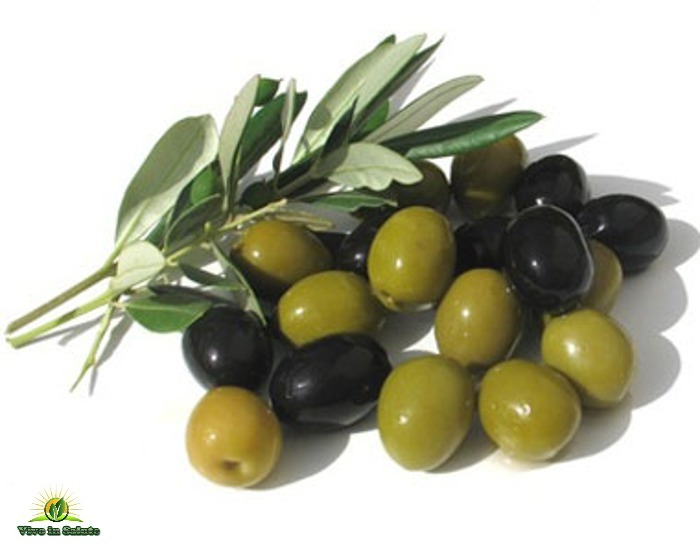 Mangiare le olive