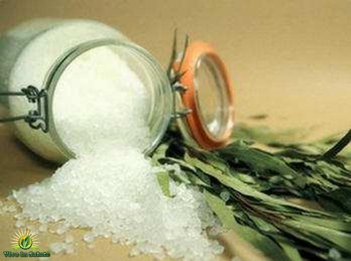 Purificazione e trattamento con il sale secondo Bolotov