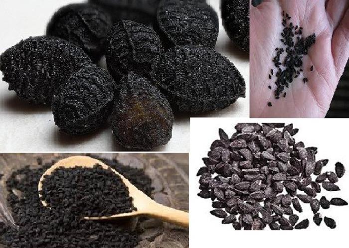 Olio-di-cumino-nero
