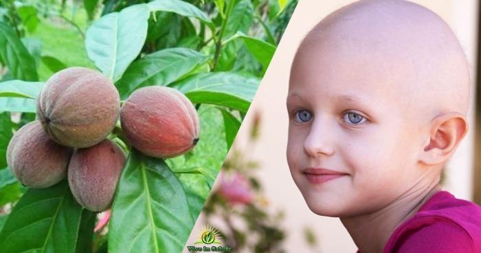 Hylandia dimostrato di trattare il 75 per cento di tutti i tumori in 15 giorni