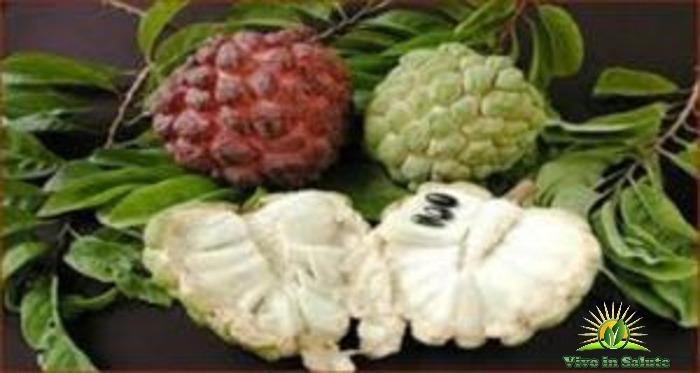 Questo frutto uccide le cellule maligne di 12 diversi tipi di cancro