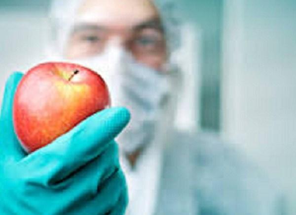 Estratto di mela uccide le cellule tumorali del colon